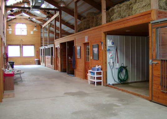 Grooming and Tackroom!