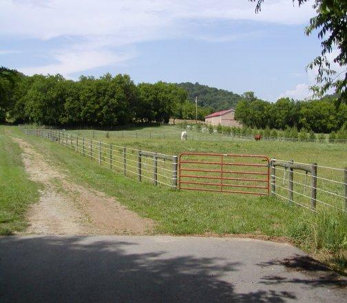 Pastures!